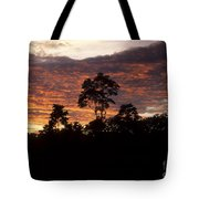 Amazon Sunset Tote Bag