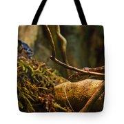 Amazon Tree Boa Tote Bag