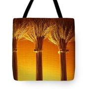 Amber Grains Tote Bag
