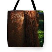 Amber Horse Tail Tote Bag