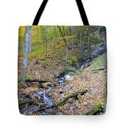Amber Malanaphy Springs Tote Bag