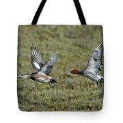 American & Eurasian Wigeons Tote Bag
