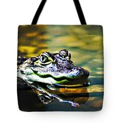 American Alligator 1 Tote Bag