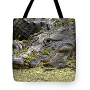 American Alligator Print Tote Bag