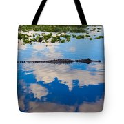 American Alligator Swimming Through The Clouds Tote Bag