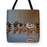American Avocet And Sleeping Dowitchers Tote Bag
