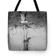 American Avocet Reflection Tote Bag
