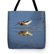 American Avocet Tote Bag