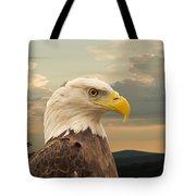 American Bald Eagle With Peircing Eyes Tote Bag by Douglas Barnett
