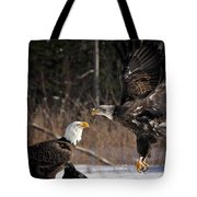 American Bald Eagles Tote Bag