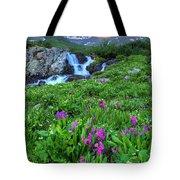American  Basin Waterfall Tote Bag