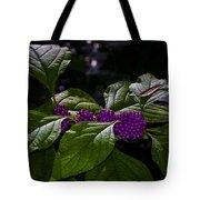 American Beauty Berry II Tote Bag