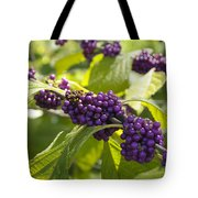 American Beautyberry -callicarpa Americana Tote Bag