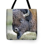 American Bison Closeup Tote Bag