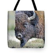 American Bison Closeup Tote Bag