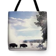 American Bison In Winter Tote Bag by Tim Fitzharris