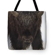 American Bison Portrait Tote Bag by Tim Fitzharris