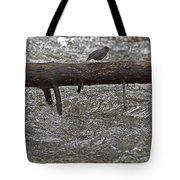 American Dipper   #7963 Tote Bag