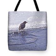 American Dipper   #8163 Tote Bag