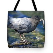 American Dipper Tote Bag