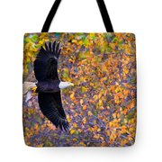 American Eagle In Autumn Tote Bag
