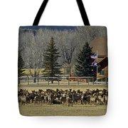 American Elk   #4305 Tote Bag