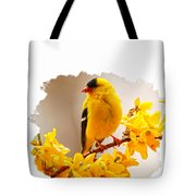 American Goldfinch Branch Of Forsythia Tote Bag
