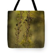 American Goldfinch Eating Seeds Tote Bag