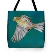 American Goldfinch Hen In Flight Tote Bag
