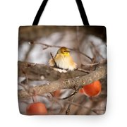 American Goldfinch In Winter Tote Bag