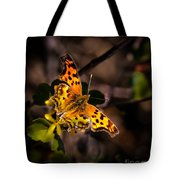 American Lady Tote Bag by Robert Bales