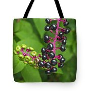 American Pokeweed  Tote Bag