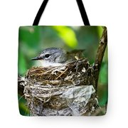 American Redstart Nest Tote Bag