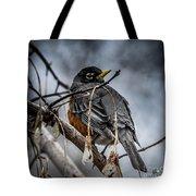 American Robin 2 Tote Bag