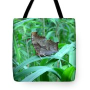 American Snout Butterfly Tote Bag