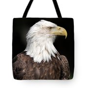 American Symbol Tote Bag