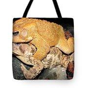 American Toads  Tote Bag