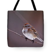 American Tree Sparrow In A Winter Setting Tote Bag