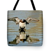 American Wigeon Drake Tote Bag