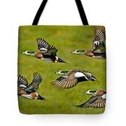 American Wigeon Drakes Tote Bag