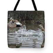 American Wigeon Pair Tote Bag