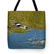 American Wigeon Taking Off Tote Bag