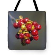 American Winterberry Tote Bag