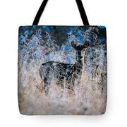 Amid The Frosty Wheat Tote Bag