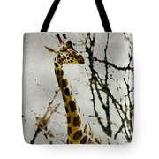 Amid The Trees Tote Bag