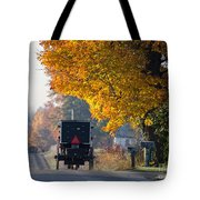 Amish Buggy Fall 2014 Tote Bag