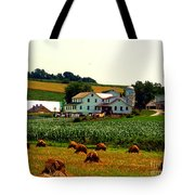 Amish Farm On Laundry Day Tote Bag