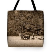 Amish Farmer Tilling The Fields In Black And White Tote Bag