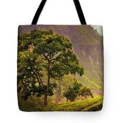 Among The Mountains And Tea Plantations. Nuwara Eliya. Sri Lanka Tote Bag