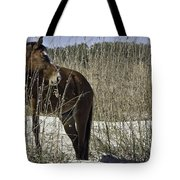 Among The Sea Oats Tote Bag